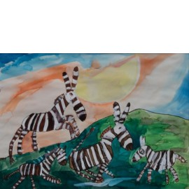Zebra's - Tineke Vierhoven