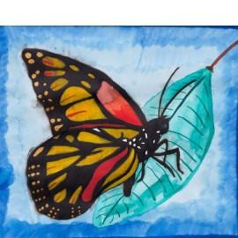 Vlinder - Esther van Goor