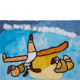 Vogelvlucht - Sharone Zandhuis