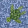Waterschildpad - foto 2754